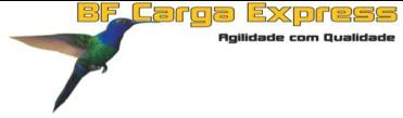 bf-cargo-express-cliente-seed-solucoes-empresariais